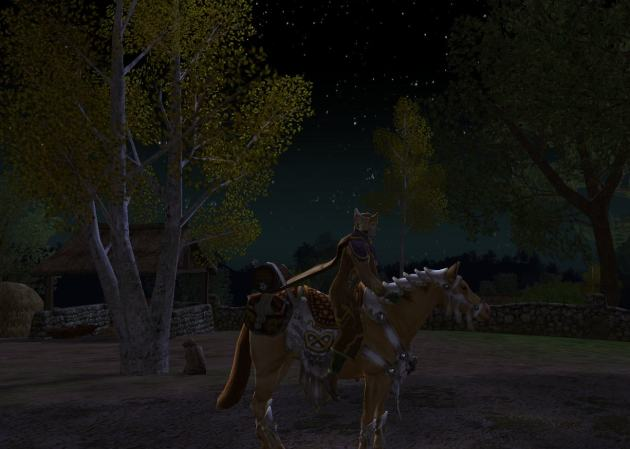 Sorry it's dark. It's always night in-game when I take horse pictures.
