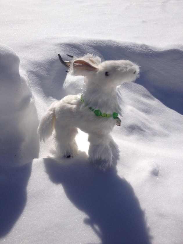 halla_snow2