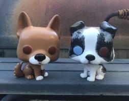 doggopops2